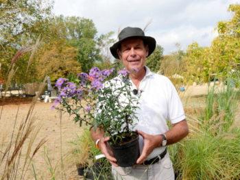 Christophe Roy - pépinière les jardins du Val d'Allier - Hortus Focus