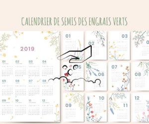 Engrais verts : calendrier