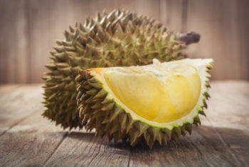 durian - fruit puant - hortus focus