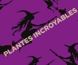 PLANTES RIGOLOTES