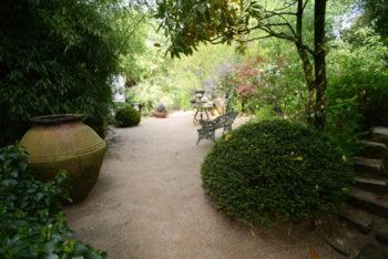 Jardin Agapanthe - Hortus Focus
