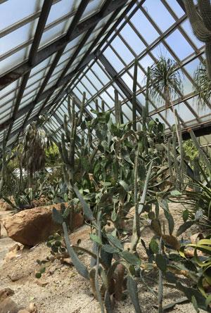 Le pavillon des plantes de zones tropicales arides