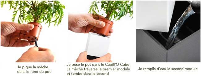 Capill'O Cube