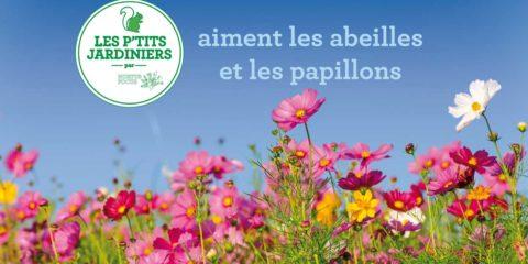 Papier ensemencé et fleurs des champs