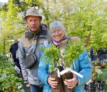 Rosiers couvre-sols : Édith et Dominique Brochet-Lanvin