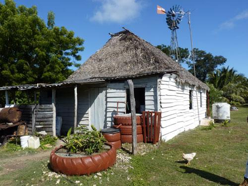 Ciénaga de Zapata - la ferme de los Cocos