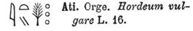 orge hieroglyphe