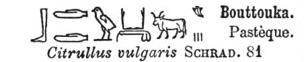 pastèque hieroglyphe