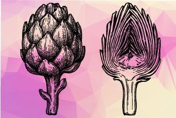 légumes du plaisir : artichaut
