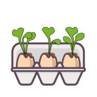 semer des radis : continue d'arroser