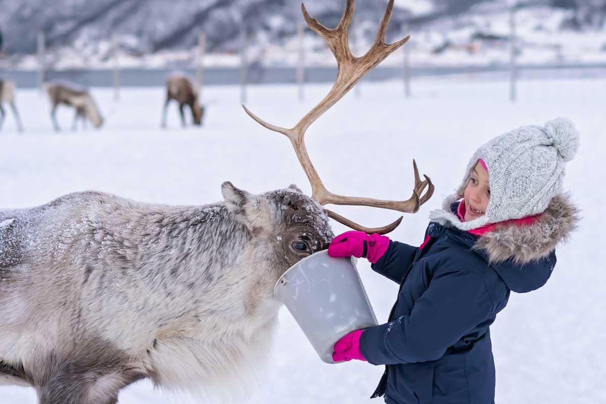 Magnus : enfant en Laponie