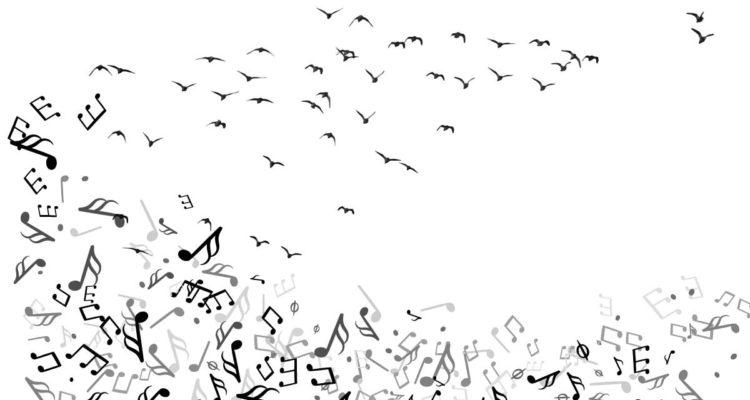 Langage des oiseaux