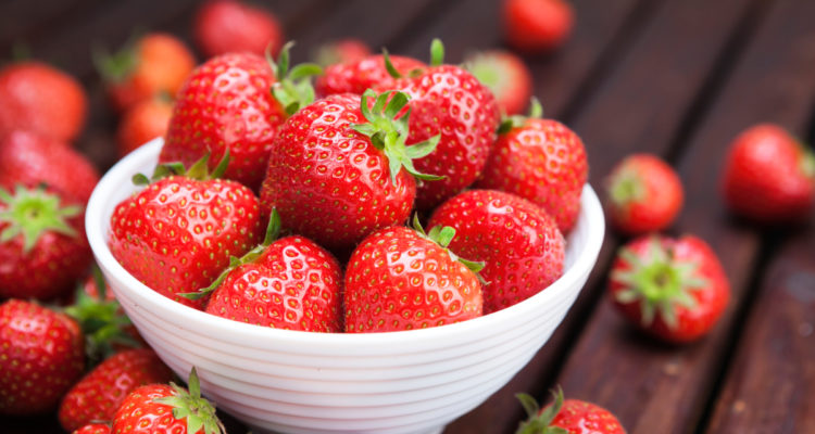 fraises cueillette - Hortus Focus