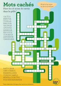 vignette mots croisés cactus