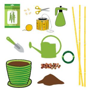 haricots verts : les ustensiles et accessoires