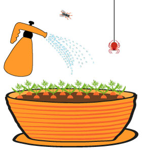 carottes grelot - les prédateurs