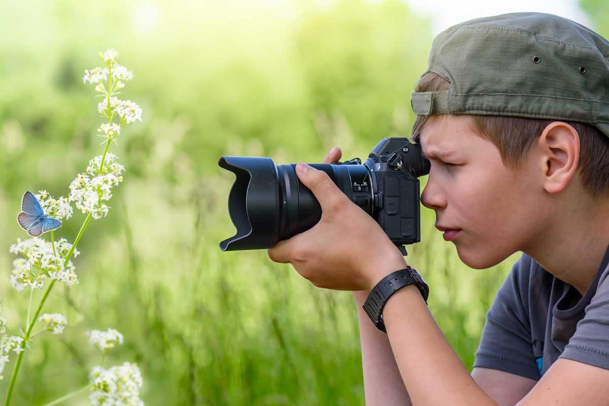 Papillon photographié par un garçon