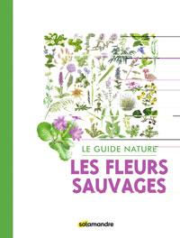 Découvrir les plantes : les fleurs sauvages