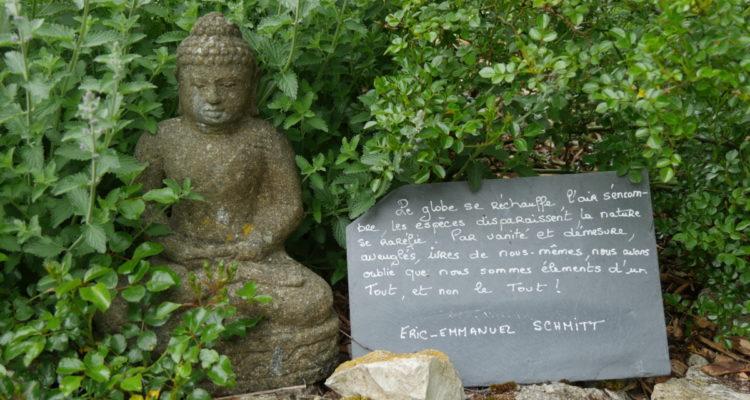 Bouddha - Hortus Focus
