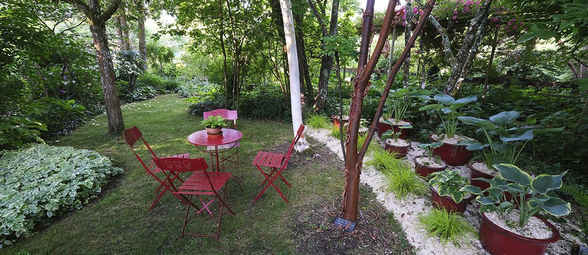 Jardin des Vieilles Vignes - Hortus Focus