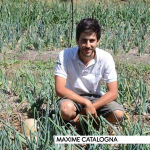 Agroforesterie Maxime Catalogna, agriculteur