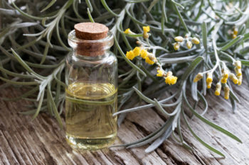 Huile d'helichrysum - Hortus Focus