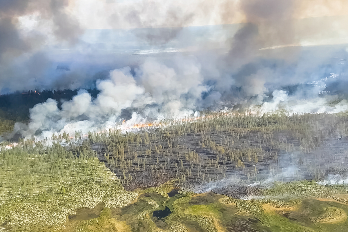 incendie en Sibérie - Hortus Focus