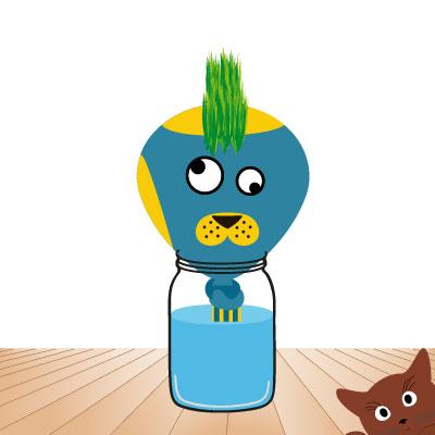 faire pousser ton herbe à chat : variante 2