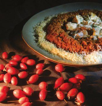 l'églantier : risotto