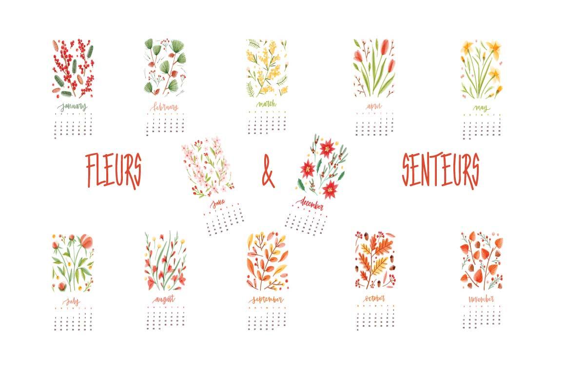 fleurs et senteurs à l'année
