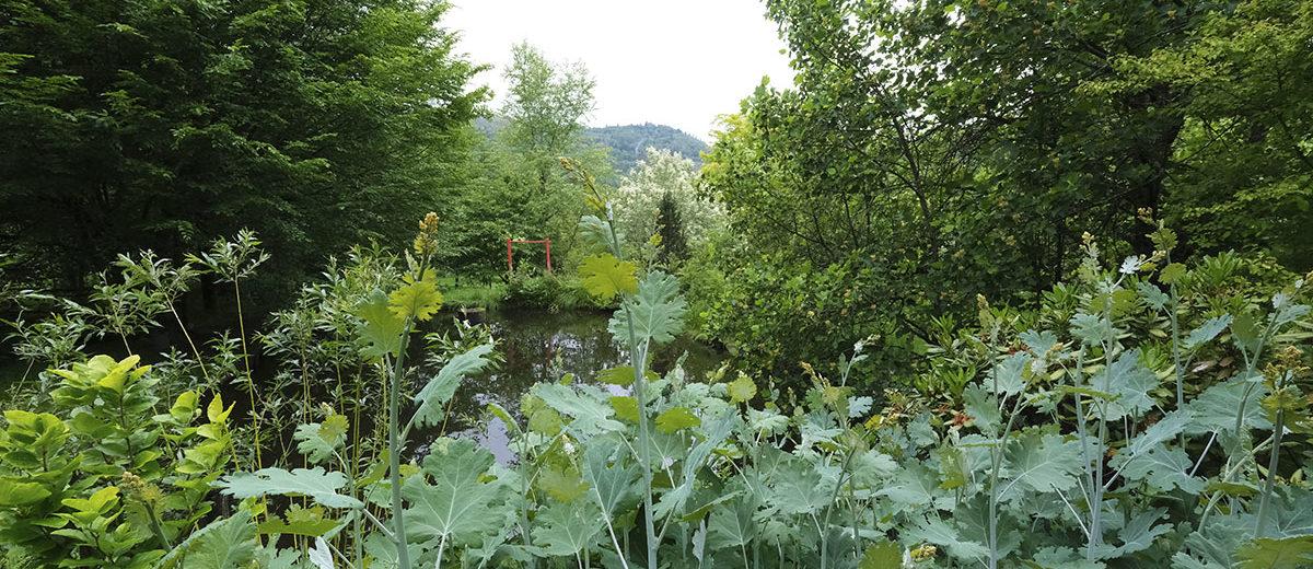 Jardin de la Ferrière - Hortus Focus