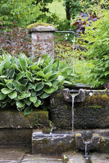 Le jardin de la Ferrière - Hortus Focus