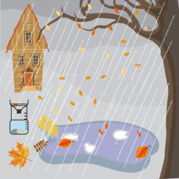 pluviomètre : l'installation