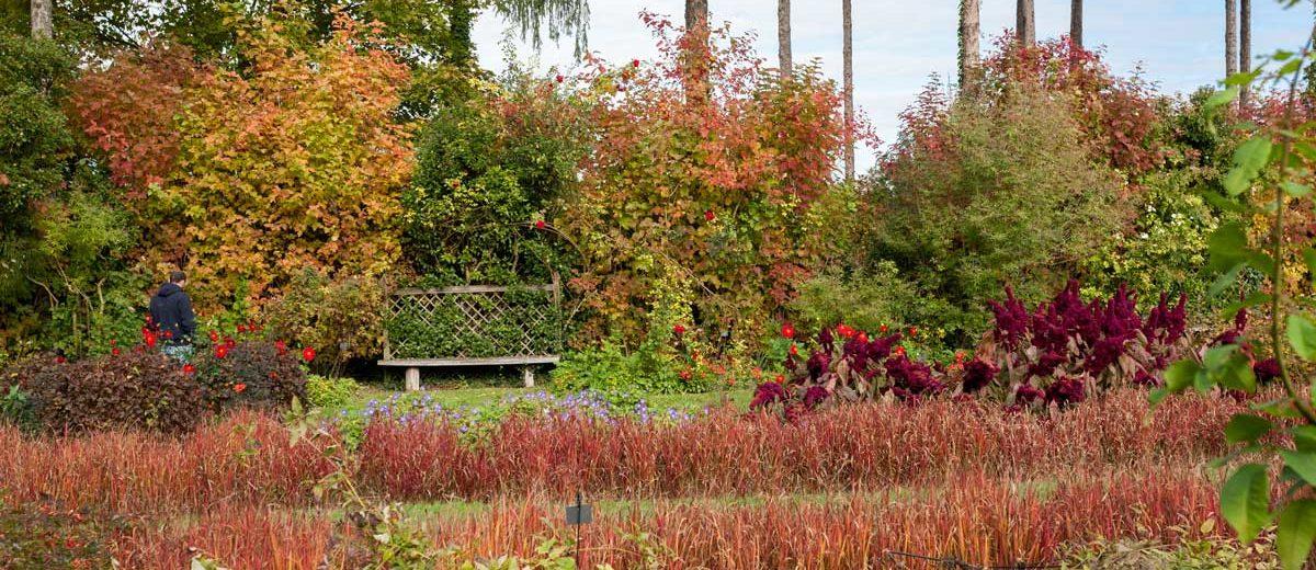 Chateau du Rivau : automne