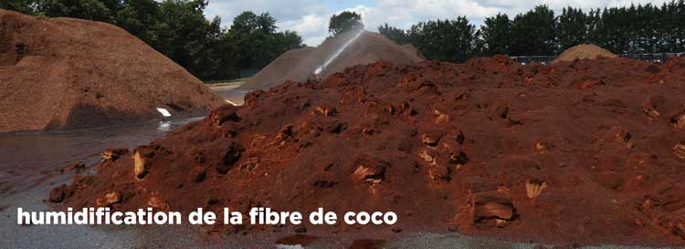 Terreau : fibre de coco humidification - Hortus Focus