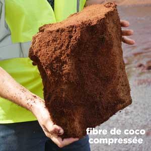 Terreau : fibre de coco compressée - Hortus Focus