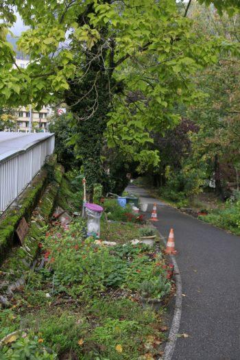 Le jardin de Robin - Hortus Focus