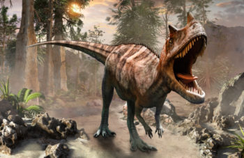 Ceratosaure - Hortus Focus