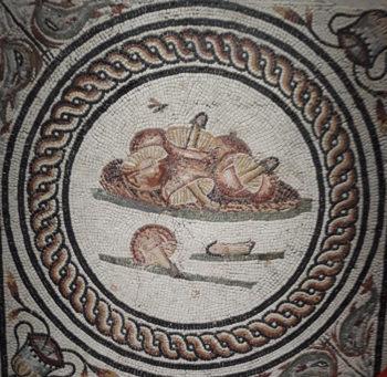 Mosaïque des Xenia
