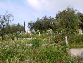 cimetière de Beni Saf