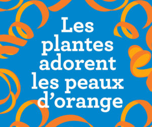 Image peau d'orange