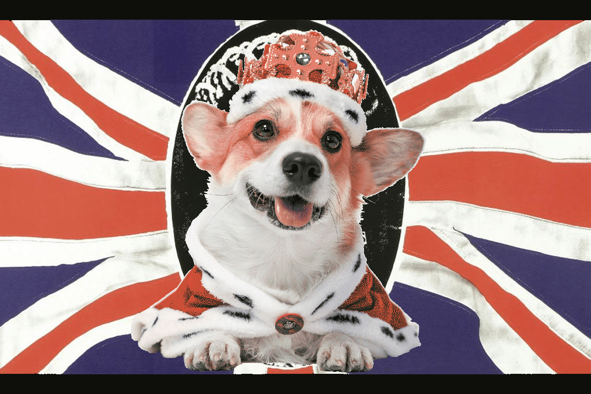 God save the Corgi