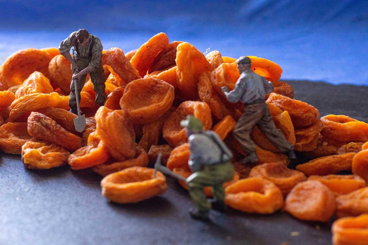 Déshydratation - abricots