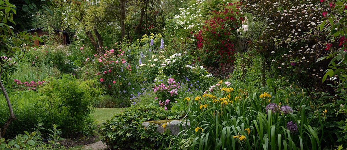 Jardin Andre Eve