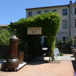 Provence : Forcalquier