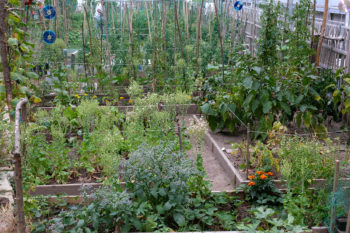 Jardin La Source à Versailles