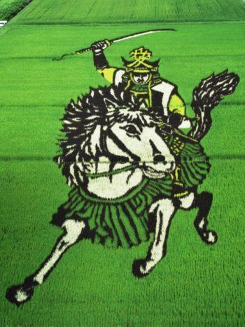 Tambo art