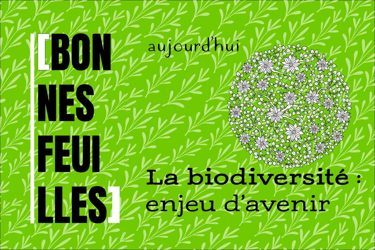 biodiversité : en jeu - bonnes feuilles