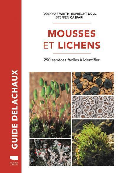 arbres : mousses et lichens
