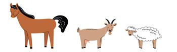 animaux de la ferme 4